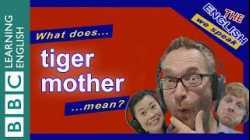 What does 'tiger mother' mean?
