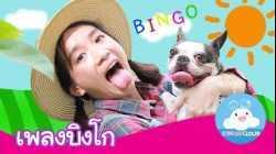 เพลงบิงโก   BINGO SONG by KidsOnCloud