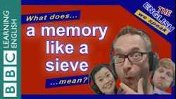 What does 'a memory like a sieve' mean?