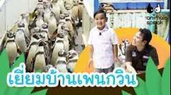 เยี่ยมบ้านเพนกวิน   Animals Speak [by Mahidol Kids]
